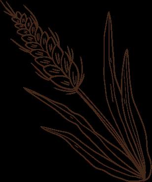 Bronowicka Spiżarnia